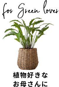 植物好きなお母さん。ガーデニング。プランター。グリーンのギフト