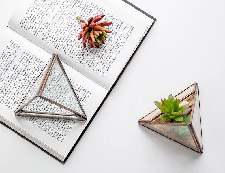 テラリウム ガラスボックス ガラスケース 容器 三角形 トライアングル ディスプレイケース 小物入れ 小物収納