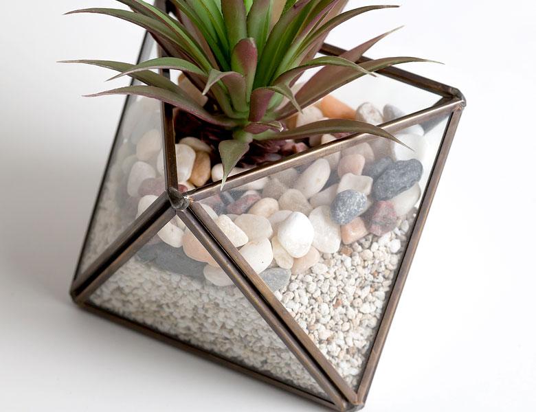 テラリウム ガラスボックス ガラスケース 容器 ひし形 ダイヤ型 ディスプレイケース 小物入れ 小物収納
