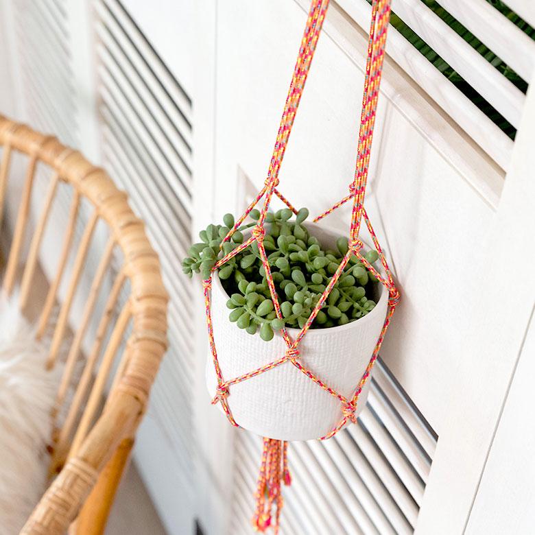 吊るして掛けて、毎日の暮らしに気軽にグリーンを取り入れてみて。