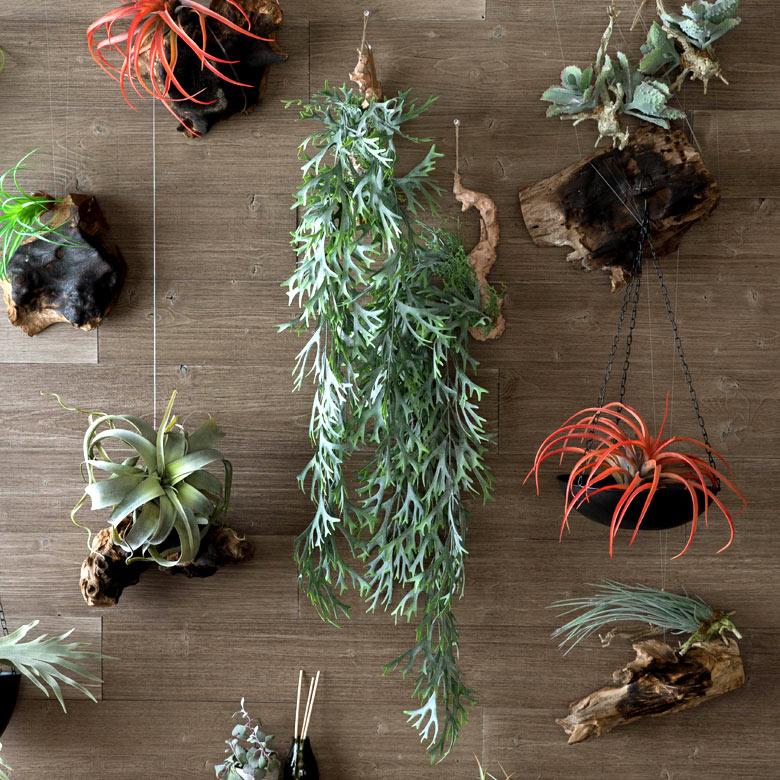 人気のシダを木に着床させたような作りのフェイクグリーン。