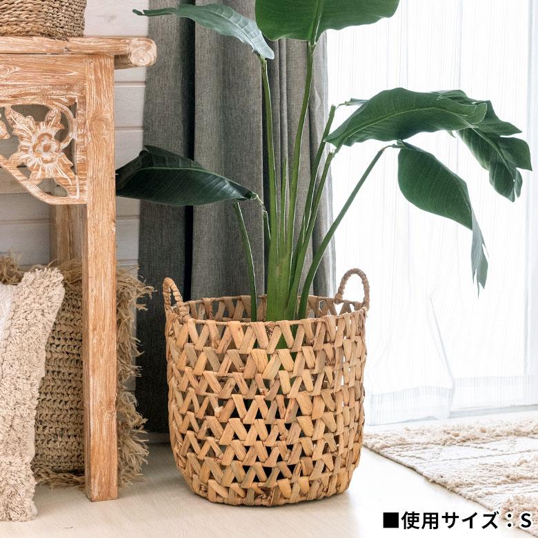 お好きな植物を入れて、お部屋でグリーンを楽しむのも素敵