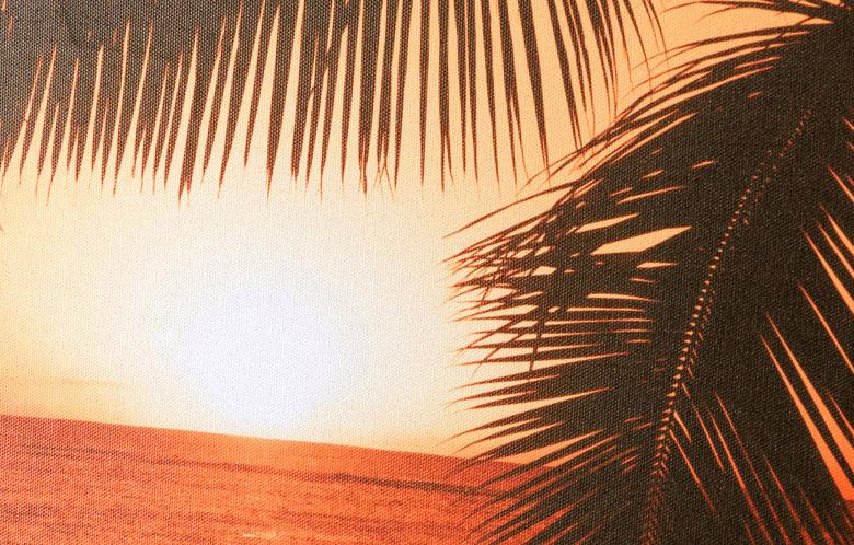 夕暮れに染まるビーチに、ヤシの木の影のコントラストの美しいアート