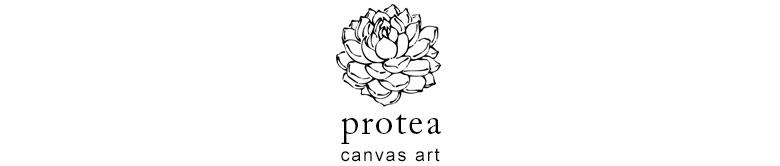 プロテアはネイティブフラワーの王様と呼ばれる存在感抜群の花