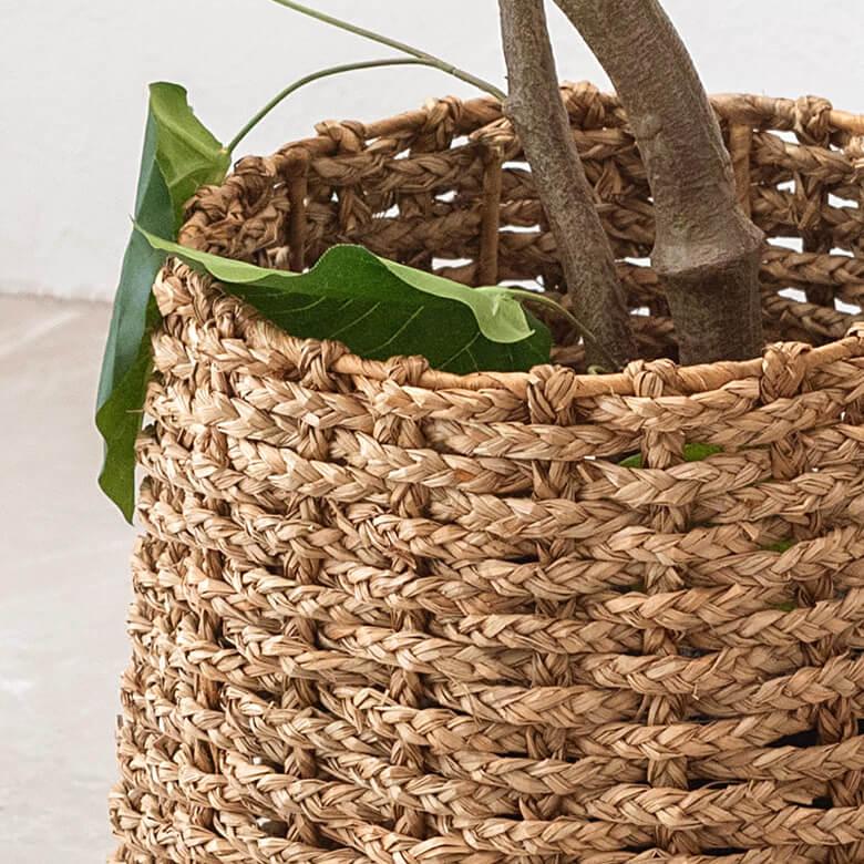 ナチュラルな色合いでシンプルなつくりが主役を引き立て、どんな植物とも相性バッチリです。