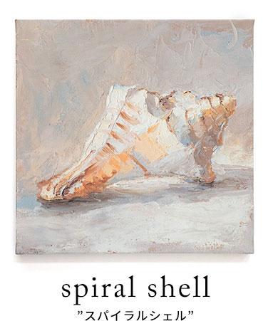 巻貝のアートシリーズ