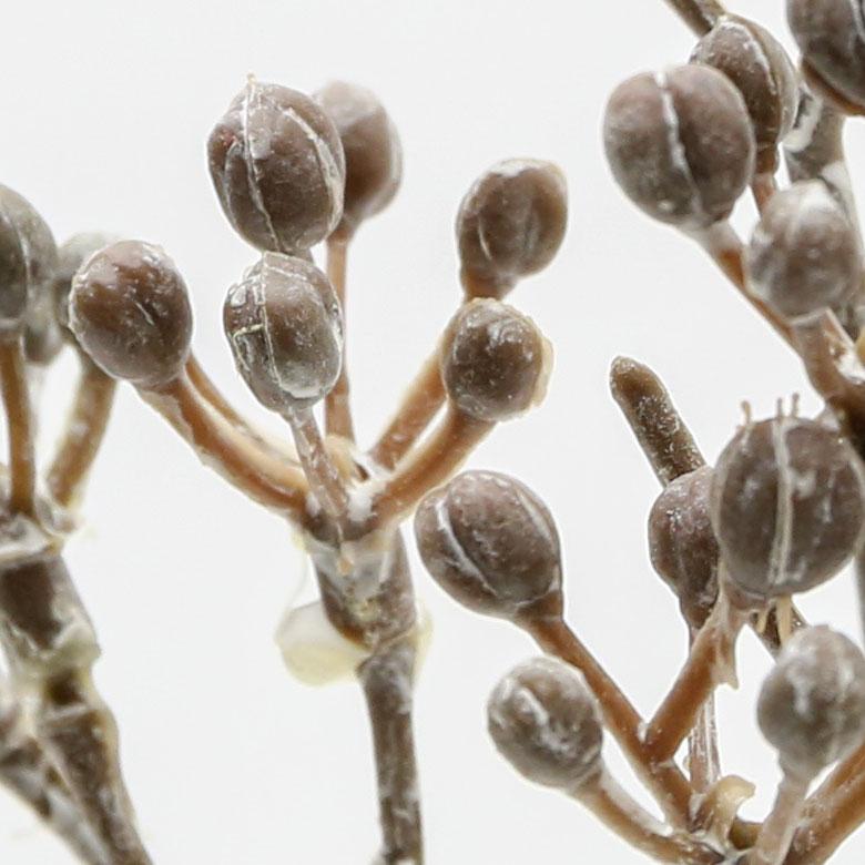 本物そっくりのフェイク植物